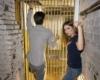 Alcatraz Escape Room
